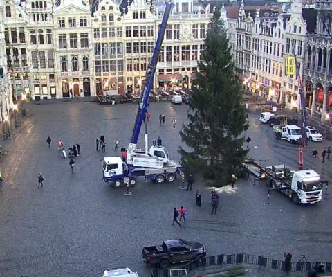 Transport et manutention du sapin de Noël de la Grand Place de Bruxelles depuis 2018
